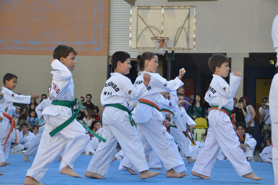taekwondo el cim