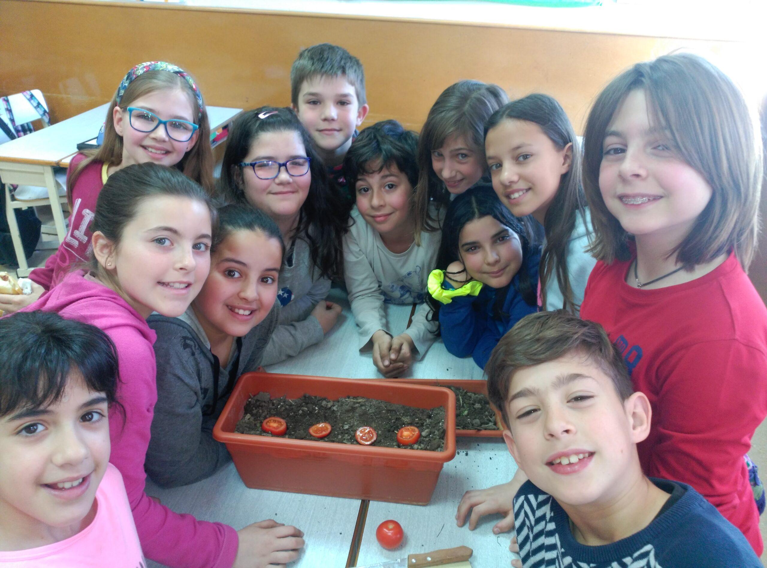 Els alumnes de 5è Bruc d'hivern hem treballat les plantes