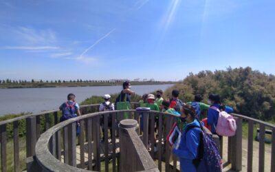 Delta del Llobregat 4t